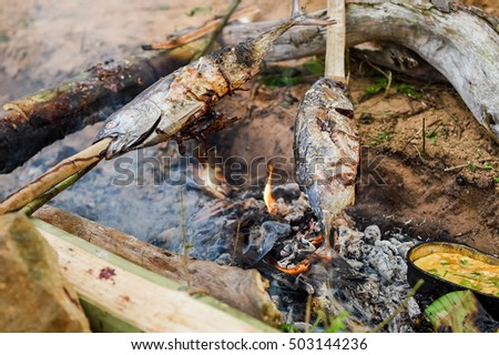 Grilled Fish Camp Fire Cooking Outdoors Grilling On Campfire