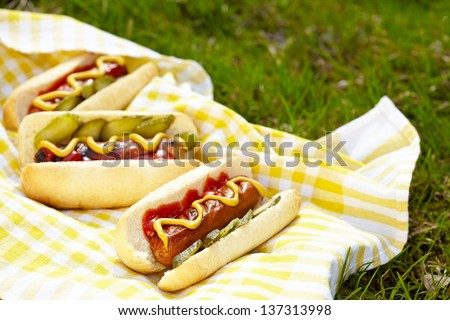 Grilled hot dogs with mustard, ketchup and relish on a picnic table - stock photo