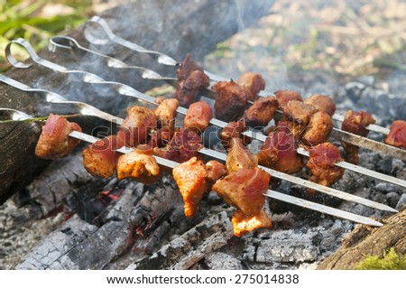 Grilled meat on camp fire - stock photo