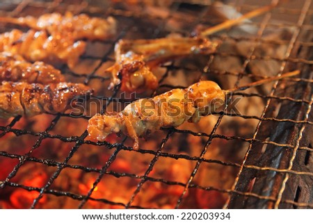 Grilled meat skewers on a BBQ - stock photo