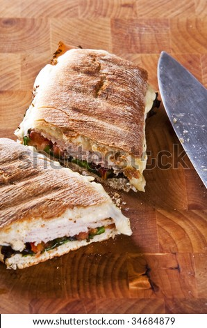 grilled panini sandwich with melted cheese - stock photo
