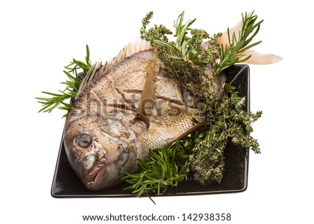 Grilled sea perch
