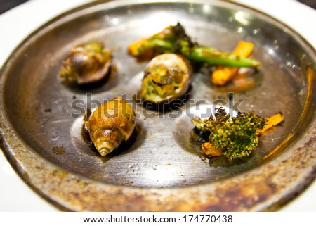 Grilled spotted babylon in dish - stock photo
