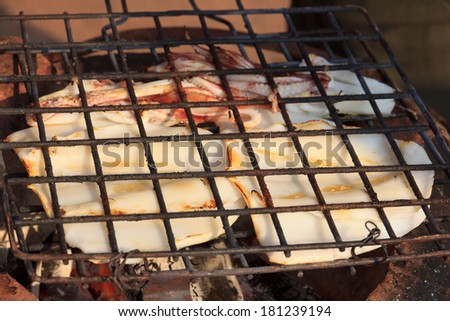 Grilled squid on the grill
