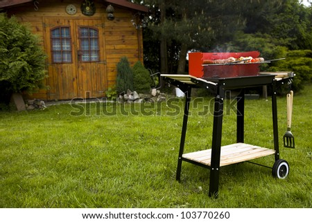 Grilling meat in flames! Tasty dinner - stock photo