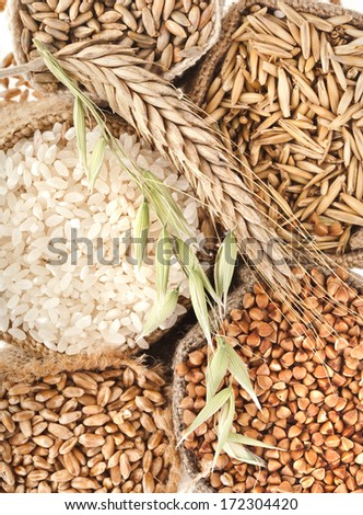 groats seed meal and grains in bags close up top view surface  background  - stock photo