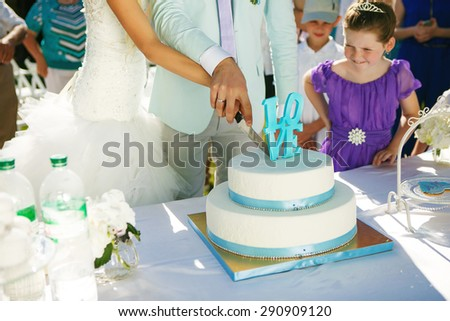 Groom and bride cut the wedding cake