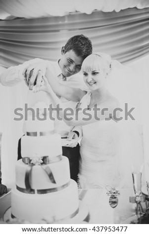 Groom and bride look charming while cutting a wedding cake
