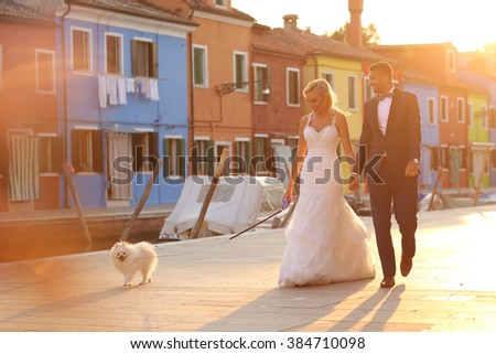 groom and bride walking their dog - stock photo