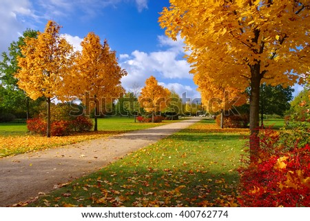 Grossraeschen avenue of maple trees in fall, nice autumn colours - stock photo