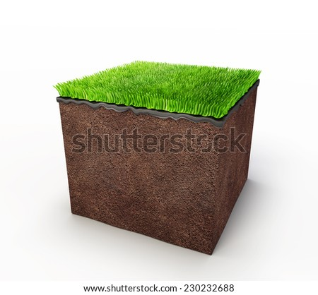ground and  grass isolated on a white background