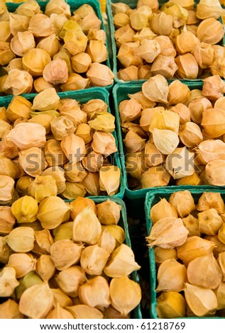 Ground cherries for sale in quart containers at a farmer's market. - stock photo