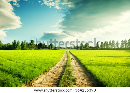 ground road and field of spring grass - stock photo