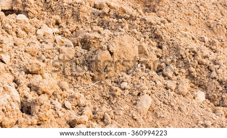 Ground textured surface background under bright sunlight
