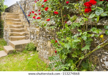 grounds and gardens of battle abbey, east sussex, uk - stock photo