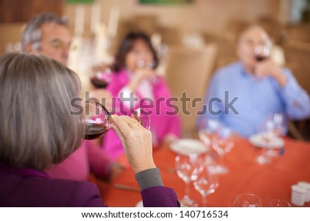 group of aged friends drinking red wine in restaurant - stock photo