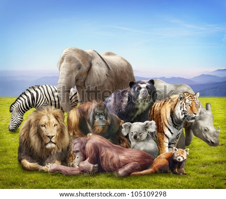 Group of animals on grass - stock photo