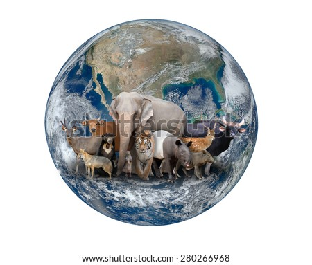 group of asia animal with planet earth, Element of this image are furnished by NASA - stock photo