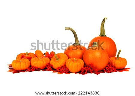 Group of autumn pumpkins and leaves forming a border over white - stock photo