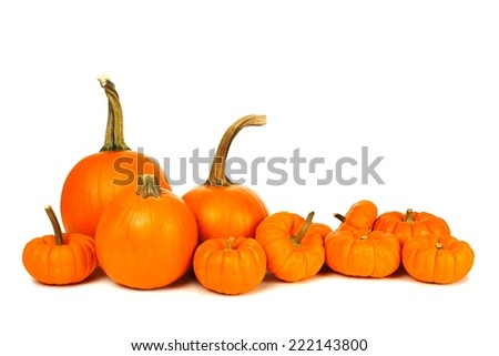 Group of autumn pumpkins forming a border over white - stock photo