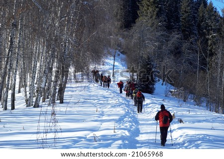 Group of backpackers in winter mountain forest - stock photo