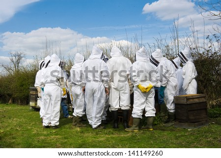 Group of beekeepers on beekeeping course at an apiary examining hives in summer on a sunny day, with bees flying in the air. - stock photo