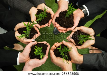 Group Of Businesspeople Hands Holding Green Plant With Soil - stock photo