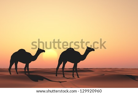 Group of camels in the desert. - stock photo