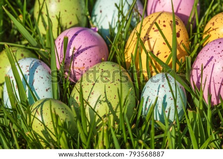 Group of colorful eggs on grass. Easter concept