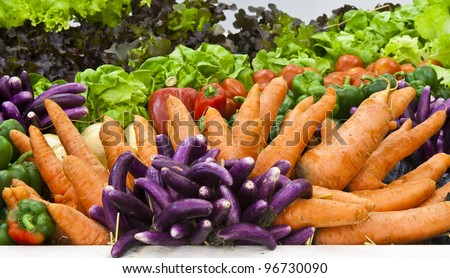 group of colorful vegetables