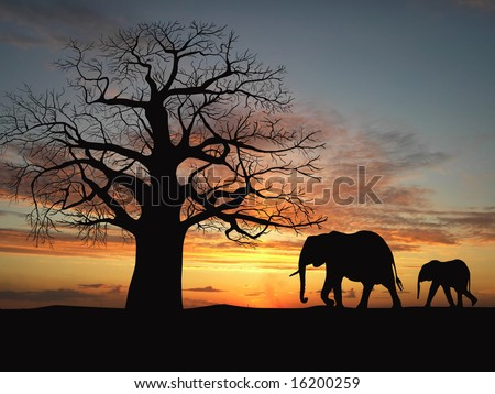 Group of elephant in africa - stock photo