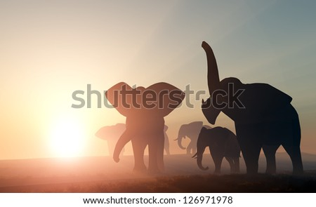 Group of elephants in the wild. - stock photo