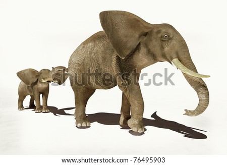 Group of elephants on a white background