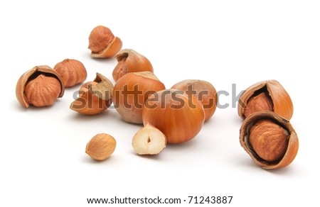 Group of filberts. Isolated object. - stock photo