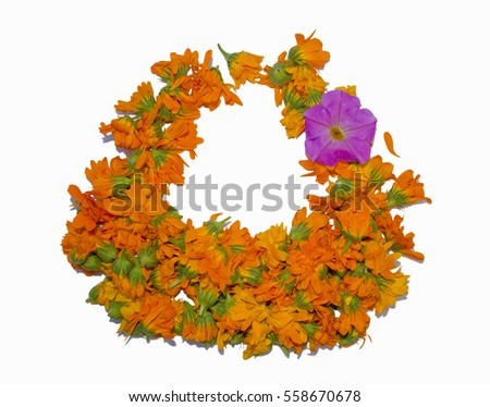 Group of flower arranged in form of hand basket Pot marigold Calendula officinalis