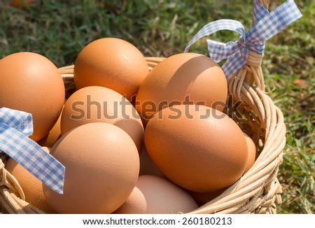 Group of fresh eggs with a basket on grass background.