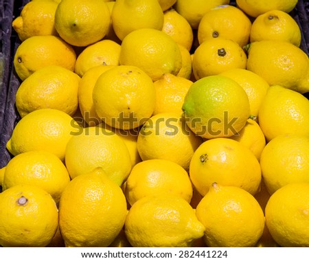Group of fresh lemons in a supermarket at Colfax, Whitman County, Washington, USA. Close up and full frame view of lemons. Color full and healthy concept.