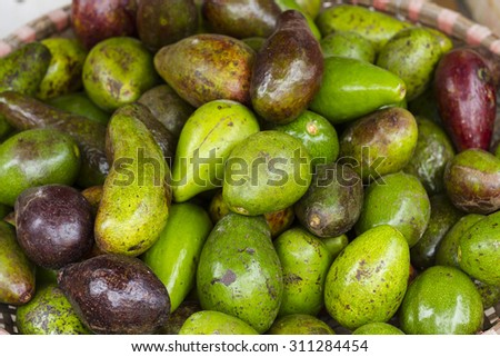 Group of fresh ripe and unripe avocados in the market at Hanoi, Vietnam. A close up full frame of fresh avocados. - stock photo