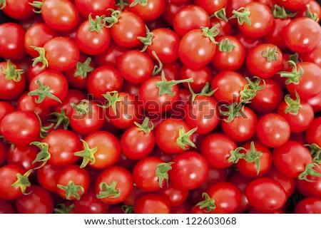 Group of fresh tomatoes - stock photo