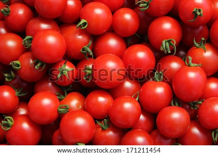 Group of fresh tomatoes. - stock photo
