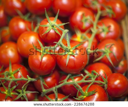 Group of fresh tomatoes.Stall of tomatoes at the market  - stock photo