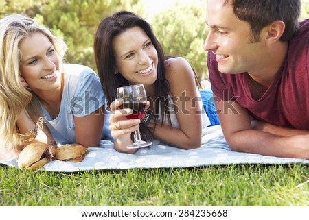 Group Of Friends Enjoying Picnic Together - stock photo