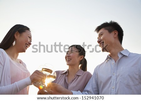 Group of Friends Toasting Each Other on Rooftop at Sunset - stock photo