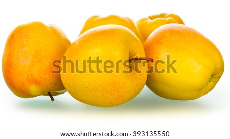 Group of golden yellow apples isolated with clipping paths on white background, focus area is increased by combining multiple pictures - stock photo