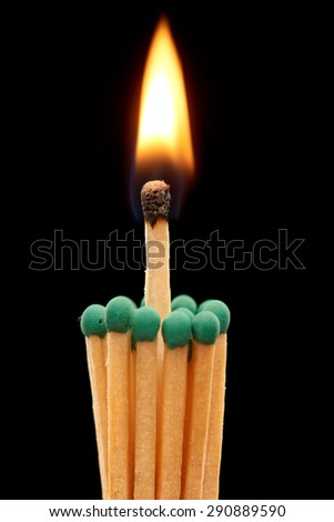 Group of green wooden matches with burning match in the center, isolated on black background - stock photo