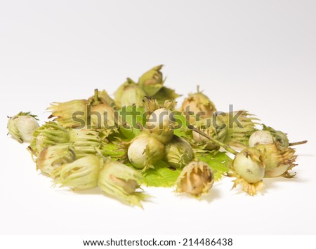 Group of hazel nuts isolated on white background