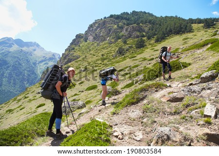 Group of hikers in the mountain. Climb to the top. summer hiking - stock photo