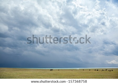 Group of horses pasturing under stormy clouds near lake - stock photo