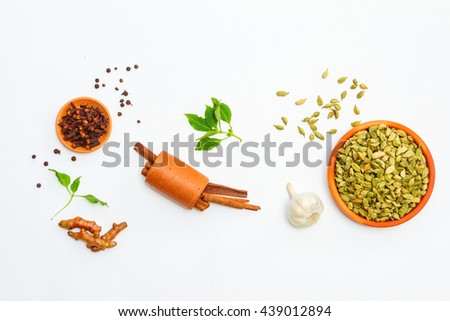 Group of indian spices and herbs on white background, top view mix indian spices and herbs difference ware on white background for design or decorate vegetables, spices, herbs or foods content. - stock photo