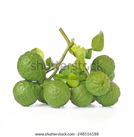 Group of kaffir Lime or Bergamot fruit on white background. - stock photo